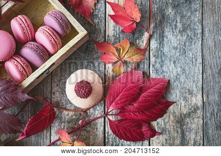 Pink and white Macaroni with raspberries and a beautiful rose flower. Dessert close-up. Copy space. The horizontal frame.