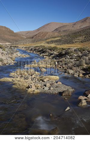 Frozen river in Lauca National Park on the altiplano of northern Chile