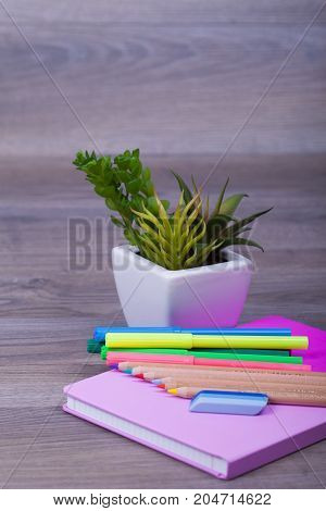 School Office Supplies On Wooden Background