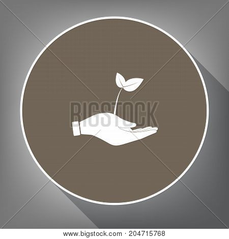 sprout in a hand sign of environmental protection. Vector. White icon on brown circle with white contour and long shadow at gray background. Like top view on postament.