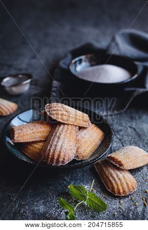 Madeleine - Traditional French Small Cakes