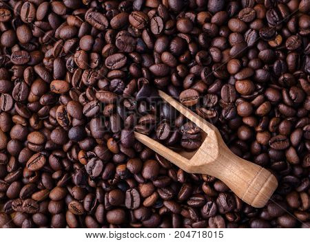 Mixture of different kinds of coffee beans. Coffee background.