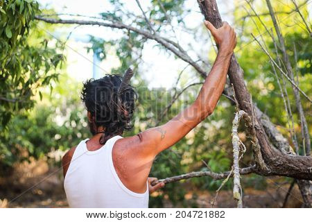 A man holding a tree branch in the orchard