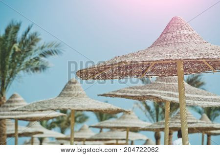 Umbrella and beach. Summer vacation and traveling. Beach straw umbrella with palm tree. Sunny blue sky at resort. Relax and holiday.