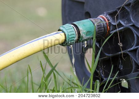 Wasting Water In The Garden, Water Leaking From A Garden Hose Spigot. Plastic Gardening Hose With Th