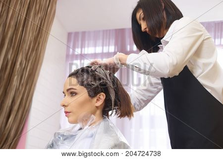 Beautician is dying hair. Young female in beauty salon.
