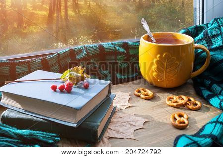 Fall background. Cup of tea cookies books and plaid on windowsill with fall forest outdoors. Fall still life with concept of spending fall time at home. Fall still life. Fall background