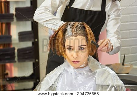 Woman in hair salon. Beautician dying hair, young female.