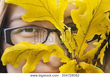Woman in glasses face behind the autumn yellow leaves. Autumn portrait with oak leaves.