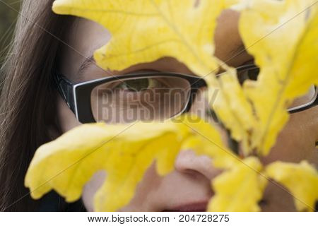 Woman hiding behind yellow autumn leaves. Branch of oak hide face