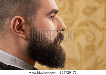 Side view of bearded face. Caucasian guy with beard, macro. How to look more manly.