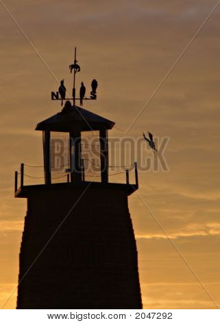 Orange Sunrise behind Lighthouse in Kissimmee Florida with birds poster