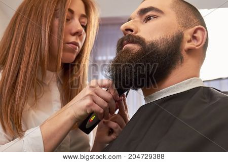 Barber is grooming beard. Man in barbershop.