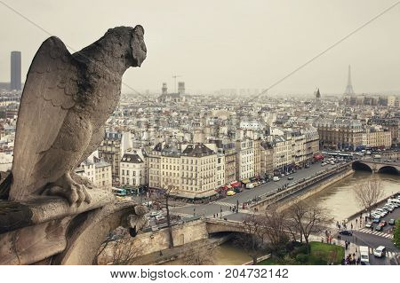 View from Cathedrale Notre-Dame de Paris to the spectacular Paris, Seine, Hotel Notre-Dame Saint Michel and Eiffel tower. Picture is taken from gargoyle statues side.