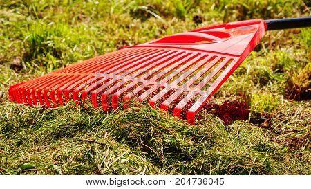 Orange rake on stick on green grass lawn garden tools