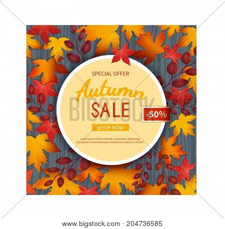 Autumn sale flyer template. Poster, card, label, background, banner on circle frame with leaves on a wooden table. Special seasonal offer.  Vector illustration. Top view