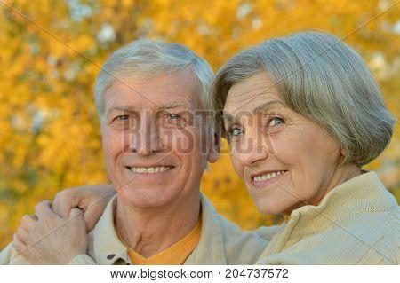 portrait of beautiful caucasian senior couple  in the park