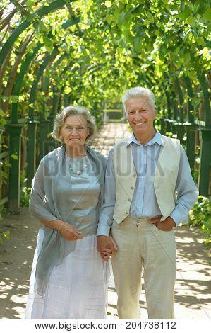portrait of beautiful caucasian senior couple walking   in the park