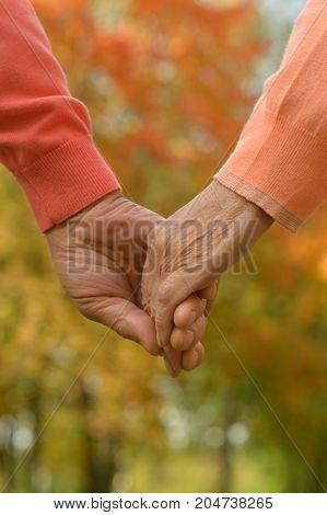 Elderly couple holding hands in autumn park