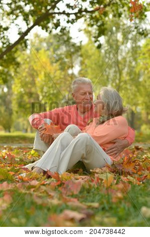 portrait of beautiful caucasian senior couple  sitting on leaves  in the park