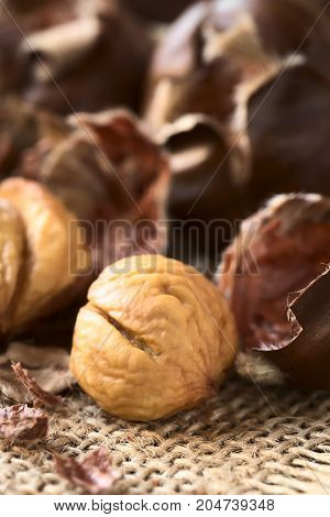 Freshly roasted or baked peeled chestnuts photographed with natural light (Selective Focus Focus on the front of the peeled chestnut)