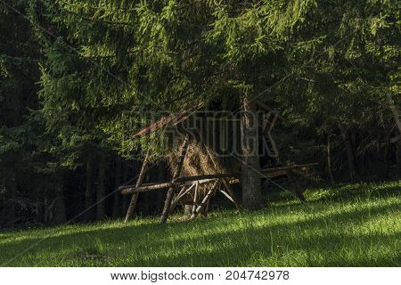 Hay rack in forest near Velky Choc hill in north Slovakia