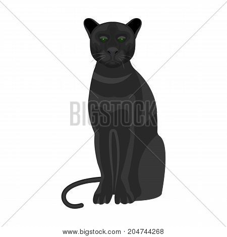 Panther, predatory animal. Pantera, wild cat single icon in cartoon style vector symbol stock illustration .
