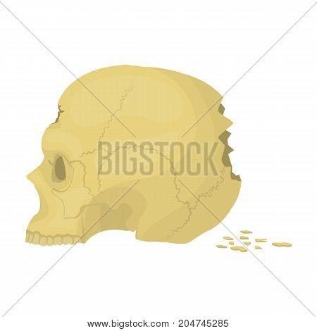 Skull single icon in cartoon style.Skull, vector symbol stock illustration .