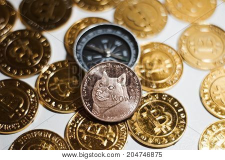 Dogecoin And Compass