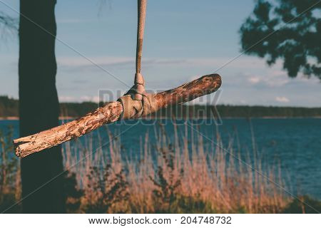 Old rope tree swing on the lake.