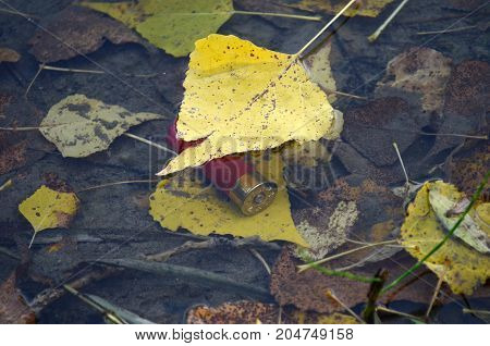 service cartridge at the bottom under water bank of the river the drowned service cartridge red service cartridge the yellow leaf floats on water
