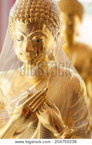 new image of Buddha in wrap - stock image