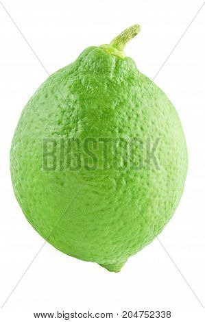 Isolated citrius. One lime fruits isolated on white background with clipping path as package design element.