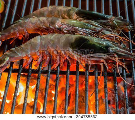 Shrimp Prawns Grilled