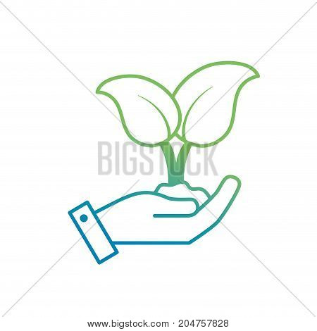 line nice plants with ground to natural ecology vector illustration