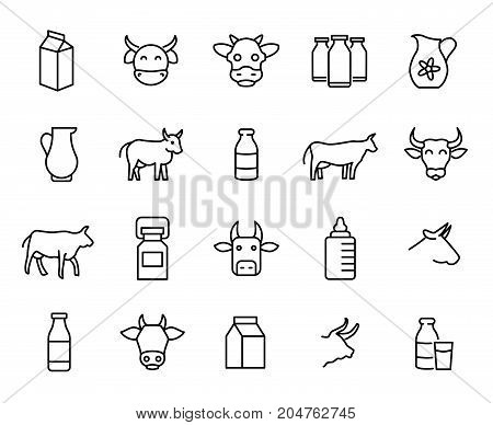 Premium set of milk and cow line icons. Simple pictograms pack. Stroke vector illustration on a white background. Modern outline style icons collection.