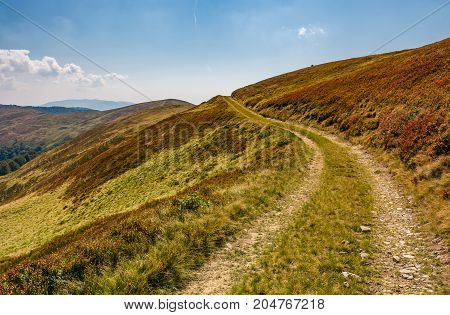 Footpath Through Hills With Forest