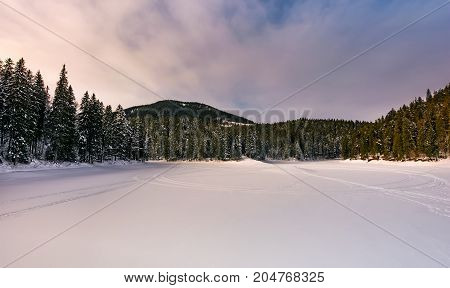 Frozen Lake In Snowy Forest