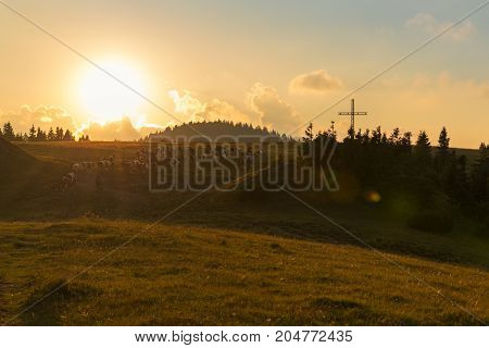 Shepherd With Cow On The Slovak Mountain