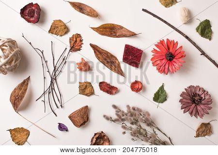 Creative Arrangement Of Different Dry Plants