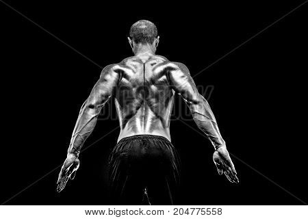 The back view of torso of attractive male body builder on black background.