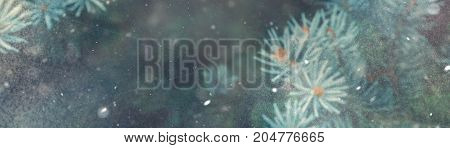 Snow Fall In Winter Forest. Christmas Nature Magic Banner