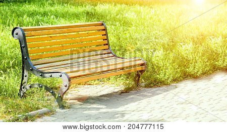 Wooden bench in an alley in the park. Green grass. Bright sunlight and glare. A place to relax. Photo with place for text. Summer rest. Copyspace.