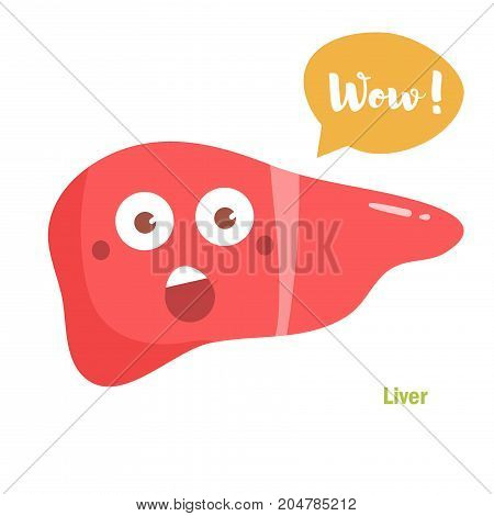 Vector cartoon liver with face. Isolated art on white background. Flat