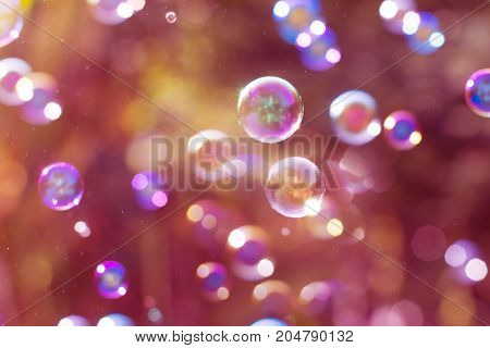 Dreamy Abstract background from soap bubble in the air with nature defocused