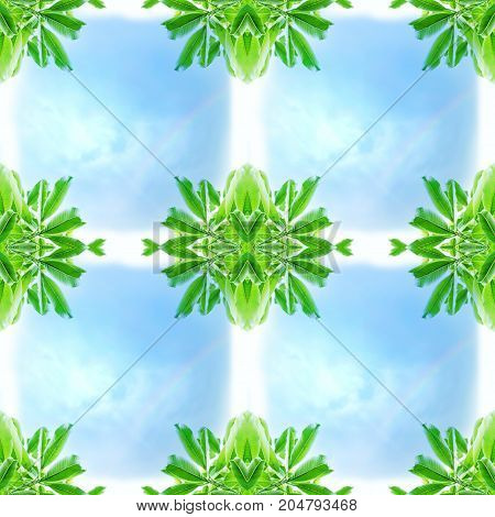 Abstract corner green leaves with blue sky and rainbow in four square grid pattern. Seamless and repeatable pattern. Useful for background, backdrop, frame in natural or environmental concept.