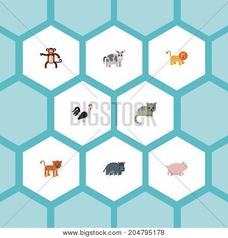 Flat Icons Kine, Panther, Hippopotamus And Other Vector Elements