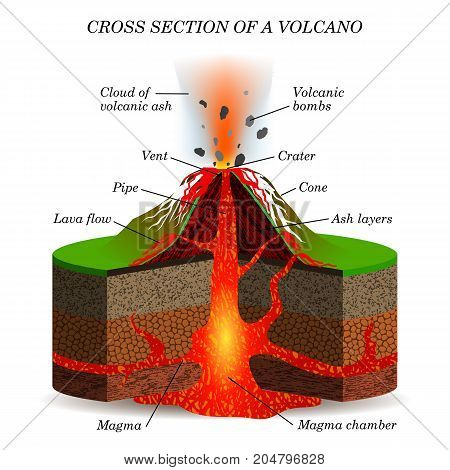 Volcano igneous eruption in the cross section. Education scientific scheme for posters placards pages banners vector illustration.