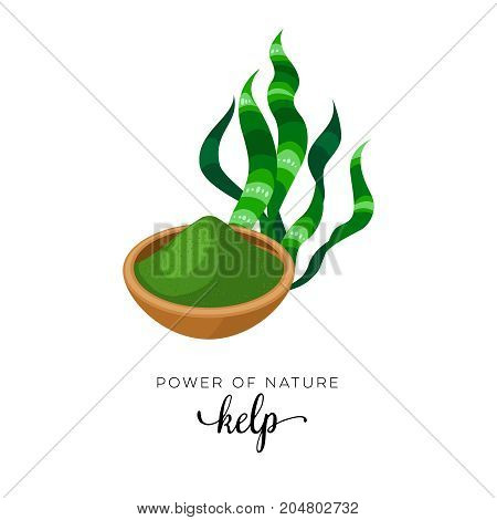 Superfood fruit. Kelp grass and powder seaweed. Vector illustration cartoon flat icon isolated on white.