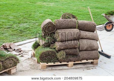 Pieces Of Turf On A Wooden Pallet Near Green Lawn
